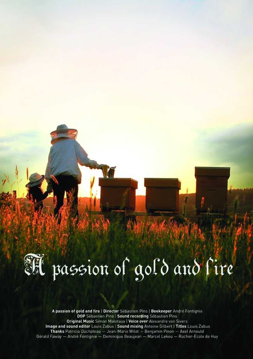 A passion of gold and fire