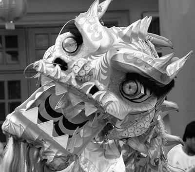 Side Glance of Dragon