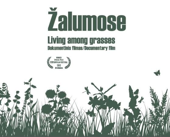 Zalumose